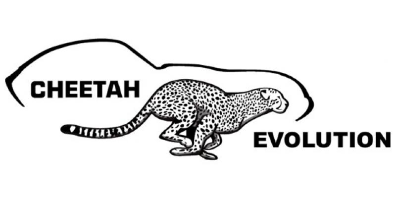 Cheetah Evolution