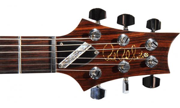 Paul Reed Smith custom